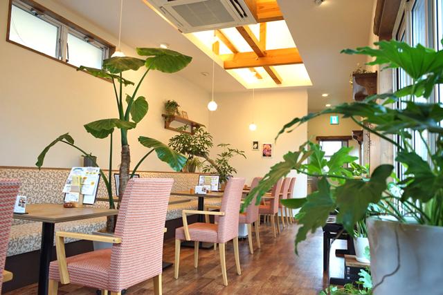 植物園のような新潟市のカフェ